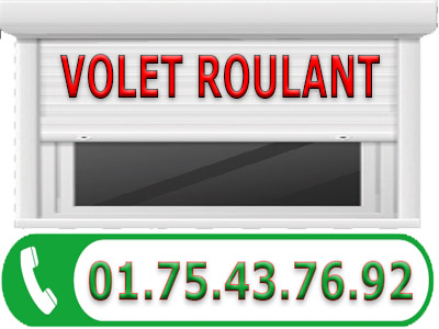 Reparation Volet Roulant Montesson 78360